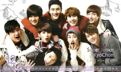 super junior 2013