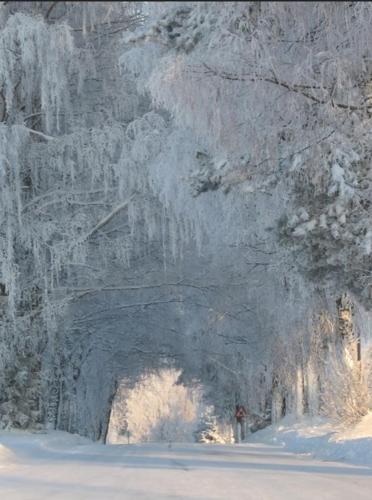 winteronderland