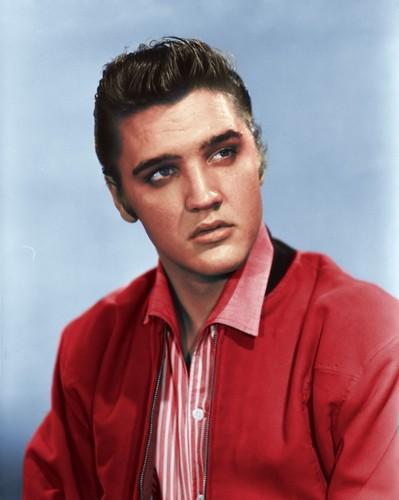 Elvis Presley wallpaper probably with a portrait titled ★ Elvis ☆