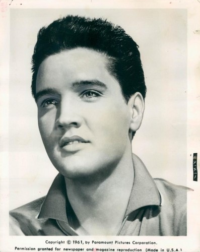 Elvis Presley wallpaper containing a portrait called ★ Elvis ☆