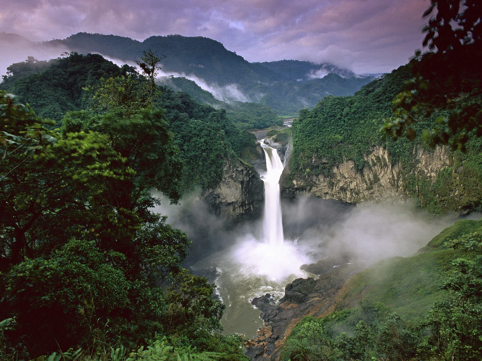 Amazon amazon rainforest photo 33125138 fanpop - Amazon wallpaper hd ...