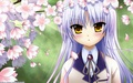 Angel Beats! - angel-beats wallpaper