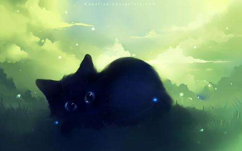 Black Kitty #3