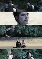 Catching Fire - katniss-everdeen photo