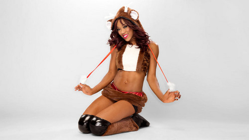 Christmas 2012 - Alicia vos, fox