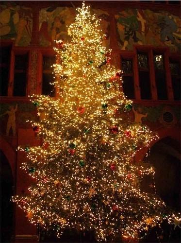 क्रिस्मस lights