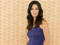 Courteney Cox  - courteney-cox wallpaper