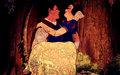 disney-princess - DP Couples wallpaper