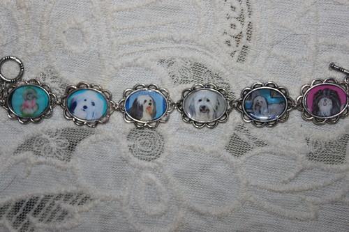 Havanese bracelet