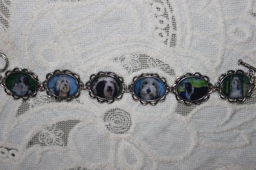 Bearded سے collie, کوللی bracelet