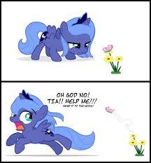 FTP , Scared Luna
