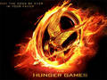Fire Mockingjay