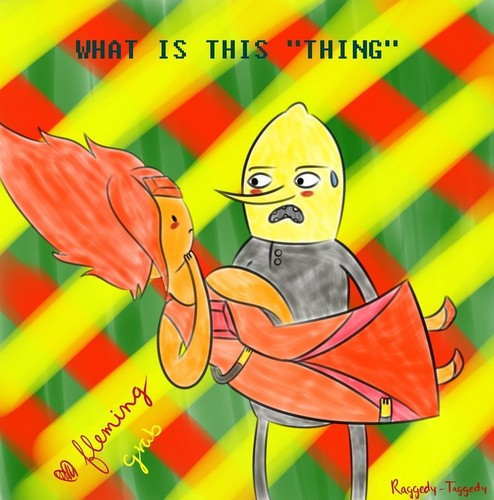 Flame Princess x Lemongrab