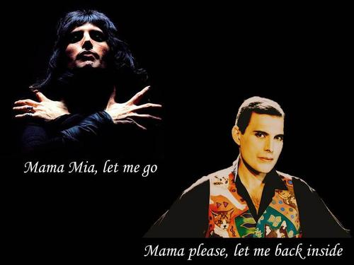 Freddie :'(