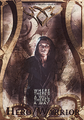 Jace (TMI Socialization Archetypes) - jace-and-clary fan art