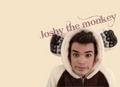 Joshy The Monkey U Belong Wiv Me