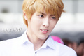 Kris Wallpaper♥ - exo-m photo