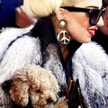 Lady GaGa - monsterka-and-leonchii photo