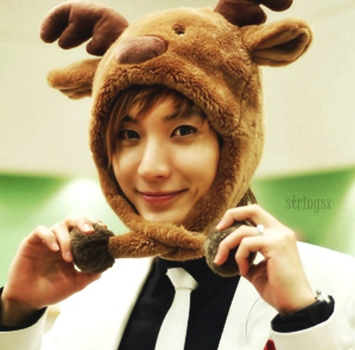 Leeteuk  Super Junior Photo 33134789  Fanpop