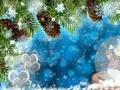 Merry Christmas! - christmas photo