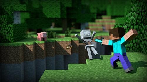 Minecraft-1 montage