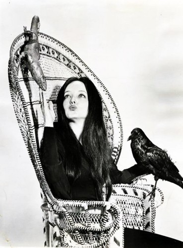 The Addams Family 1964 wallpaper with a throne titled Morticia