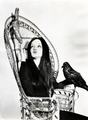 Morticia - the-addams-family-1964 photo