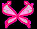 Musa Sophix wings