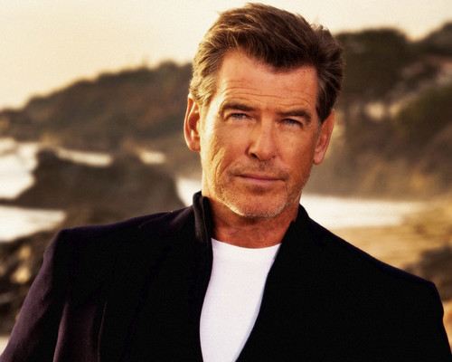 Pierce Brosnan karatasi la kupamba ukuta possibly with a well dressed person, a business suit, and an outerwear entitled PIERCE BROSNAN LIGHT