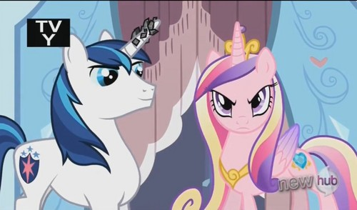 Princess Cadence 壁紙 with アニメ titled Princess Cadance