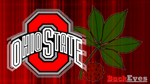 Ohio State Buckeyes karatasi la kupamba ukuta entitled RED BLOCK O WHITE OHIO STATE WITH BUCKEYE LEAF