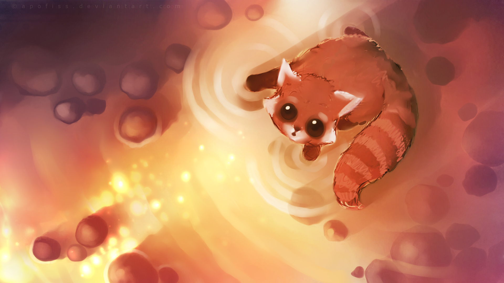 Apofiss Animals Images Red Panda HD Wallpaper And Background Photos