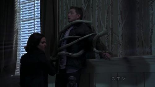 Regina 2x1