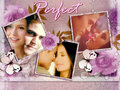 SE ♥ - stefan-and-elena wallpaper
