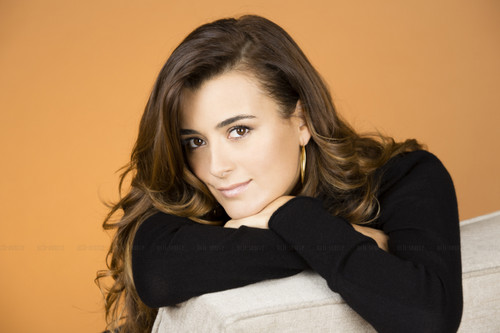 Cote de Pablo fond d'écran possibly with a well dressed person and a portrait entitled Season Ten