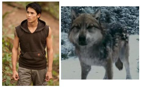 Twilight Series achtergrond called Seth,human/wolf form