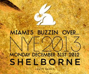 Shwayze Live - NYE Miami
