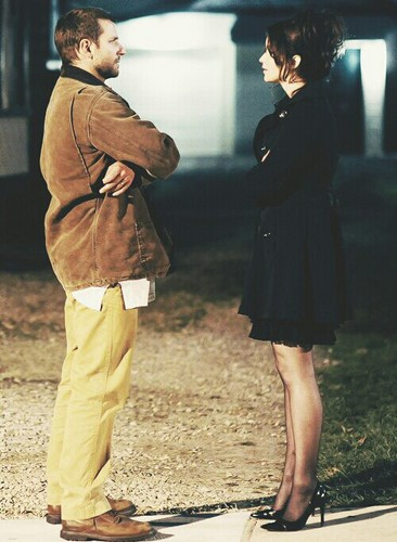 Silver Linings Playbook - silver-linings-playbook Photo
