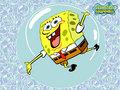 Spongebob fond d'écran