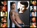 TDL collage - taylor-lautner fan art