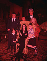 The Addams Family - the-addams-family-1964 photo