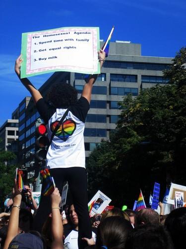 The Homosexual Agenda