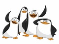 The Penguin Team - penguins-of-madagascar fan art