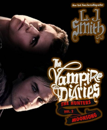 Damon and Stefan Salvatore پیپر وال called The Vampire Diaries Novels: defan cover