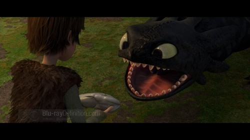 Wallpaper HD - how-to-train-your-dragon Wallpaper