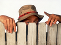 Wilson - home-improvement-tv-show wallpaper