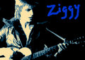 Ziggy