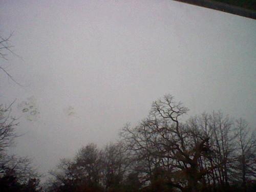 Krismas snow sky