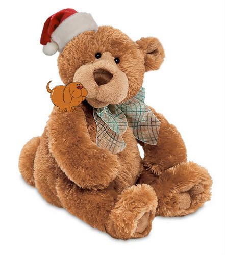 cute teddy kubeba