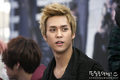dongwoon  - beast-snsd-super-junior photo